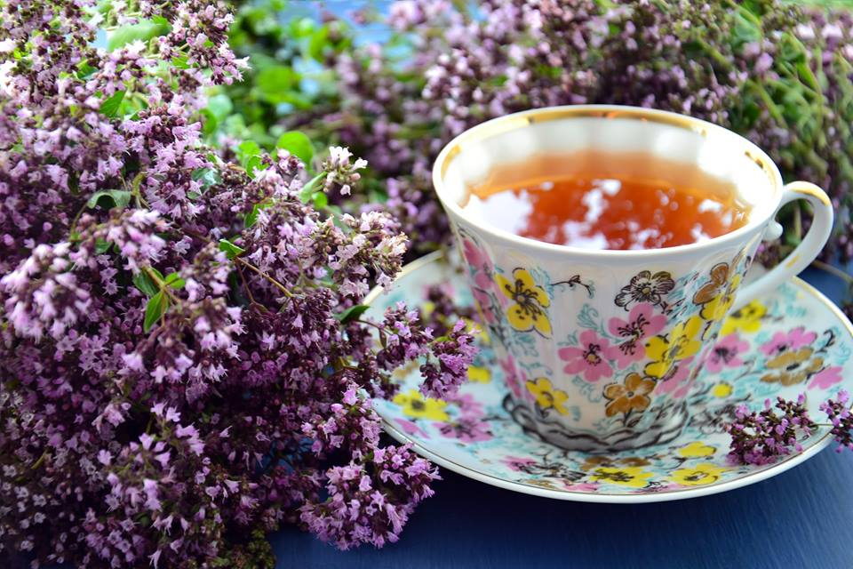 Proteggiti dal freddo: scopri tutti i benefici di Tè, Tisane e Infusi